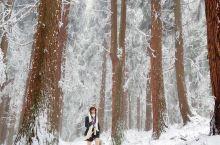 仙女山2020初雪#雪景写真#
