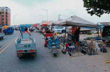 香河街头菜市场