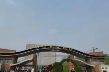 郑州动物园性价比还是挺高的