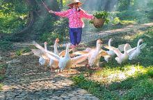 霞浦世界最美滩涂