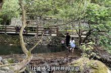 避暑玩水圣地/磐安花溪