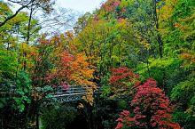 来自四川的光雾山风景大赏图