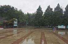 雨中漫步,心情舒畅,赞