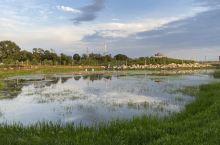 坝上公园一角。