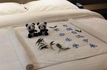 就地过年,住这样的酒店难道不香吗?