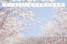 杭州周边不负春光莫干山宝藏赏花攻略
