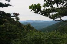 """牛背梁,给人最深刻的感受便是""""绿""""。原始森林,幽潭清瀑,峡谷风光……一路走走停停,凹造型拍个照,不知"""