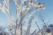 冬天去长白山旅游玩什么 靠谱推荐  这个冬天怎么玩才不算浪费?强烈推荐前往长白山! 这里有独特奇异的