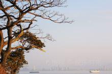 志賀岛,金印公园
