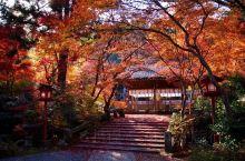 日本京都红叶穴场~~ 鍬山神社