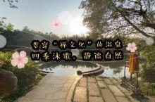 """贯穿着""""禅文化""""的温泉,四季沐歌、静谧自"""