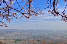 太行春色,山桃花、连翘花,杏花竞相开放…