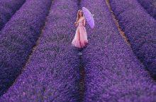 薰衣草庄园,好美丽啊。
