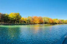 皇家山公园的秋天