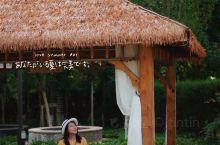 浪漫童话度假小镇,独享隐秘森林树屋