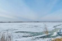 零下25摄氏度的扎龙自然保护区