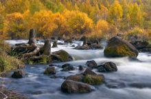 阿尔山处在大兴安岭岭脊中段,区域内山岭总长200余公里,素有大兴安岭上的绿色明珠之称。茫茫的林海,神