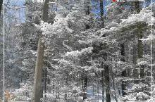 长白山冬天的美