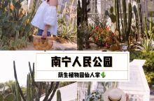 南宁拍照 人民公园荫生植物园