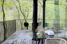 莫干山小森林里的咖啡馆,遗世独立的美好