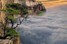 斯里兰卡~狮子岩