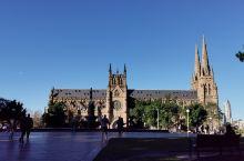悉尼圣母主教堂 • 年轻的圣殿