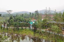 即将建成开放的武义县市民北广场
