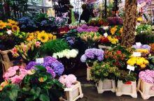 我在花卉市场