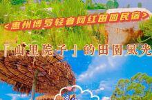 惠州轻奢网红田园民宿-山里院子的田园风光