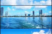 黄金海岸的悠闲生活|坐着游艇喂海鸥