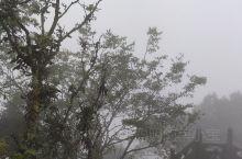 雾中武当山