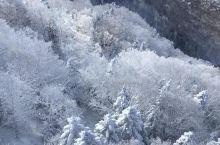 在「新穗高缆车」上欣赏北阿尔卑斯冬日绝景  「新穗高」所在的「飞驒山脉」位于本州岛的中央,横跨岐阜县