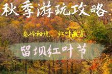 秦岭秋季秘境|体验一场红叶盛宴