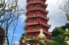 万佛寺,一所位於香港沙田区半山之百年庙宇,由平地步上其间,约走半个小時左右,途經五百羅漢路,颇為壮观