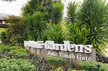 环境特别好的一个植物园,植被非常茂盛就连洗手间的环境都能够和植物园融为一体同时毫无违和感,特别推荐自