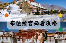 西藏布达拉宮必看攻略|预约方式+少走弯路