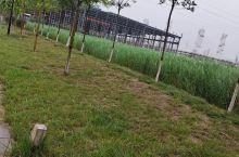 向往的旅行 浍河水岸风光旅游区,位于史村镇浍河岸畔,浍河水库是晋南蓄水最多、水面最大、设施最全、功能
