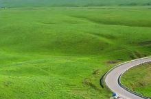 那拉提大草原 5月9日的新疆伊犁是这样的?想来吗?