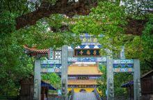 我不会告诉你寺庙边上的村子就是韩庚的老家