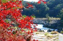 曾木瀑布公园的秋色
