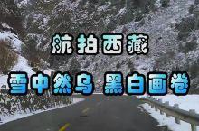 航拍西藏:雪中然乌,黑白画卷