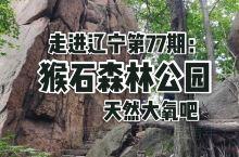 走进辽宁第77期:猴石森林公园。