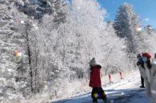 魔界景区不一样的雪景