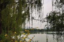 小南湖(2)