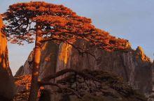 2021年夏季安徽黄山、电影《卧虎藏龙》取景地翡翠谷、九龙瀑景区、宏村、奇墅湖、皖南最美古村落塔川之
