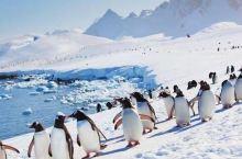 南极洲。  Antarctic Peninsula, Graham, George VI, Ells
