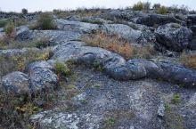 爬虫状熔岩。
