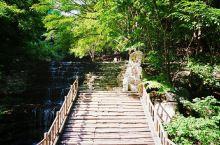 """绵山古藤谷俗名""""溪水沟"""",这里曾经是绵山静林河的发源地之一,又曾是唐代著名宰相令狐楚创办静林书院的地"""