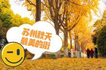 秋天的苏州(道前街篇)