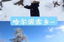 哈尔滨雪乡冬季旅游攻略哈尔滨雪乡冬季旅游